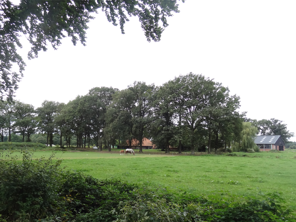 Patrijs-Paradijs Hilvarenbeek